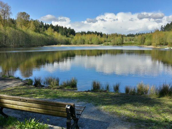 Green-Timbers-Lake-e1511886039789.jpg